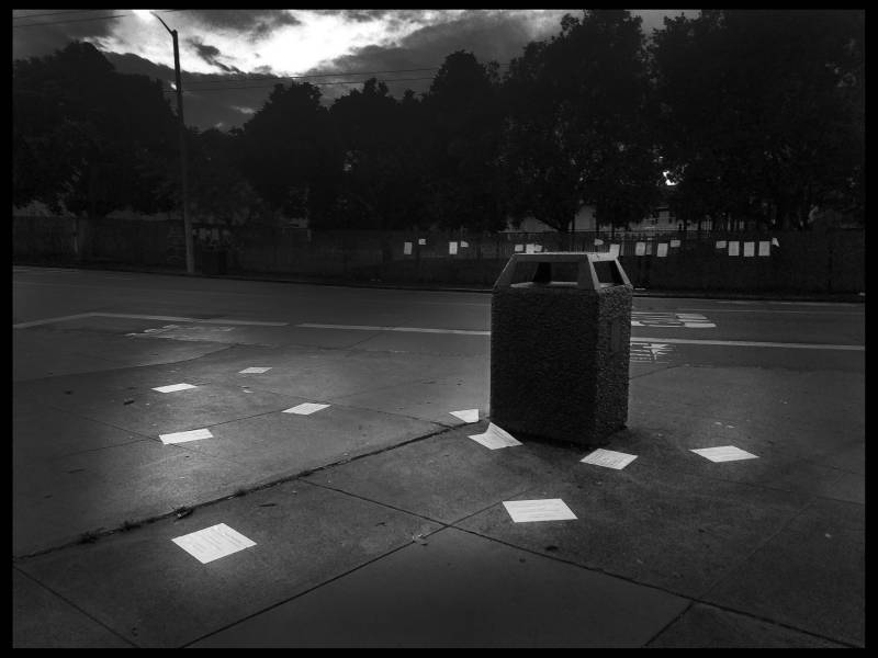 A trashcan in the Excelsior Erina has documented for years
