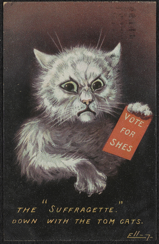 Art depicts a disheveled cat flexing its claws and holding a sign that reads 'VOTE FOR SHES'.