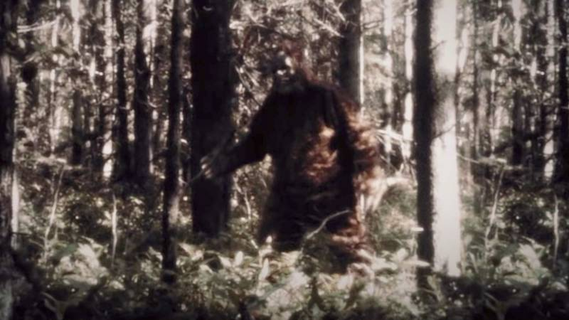 A moment from new documentary series, 'Sasquatch', featuring Bigfoot himself.