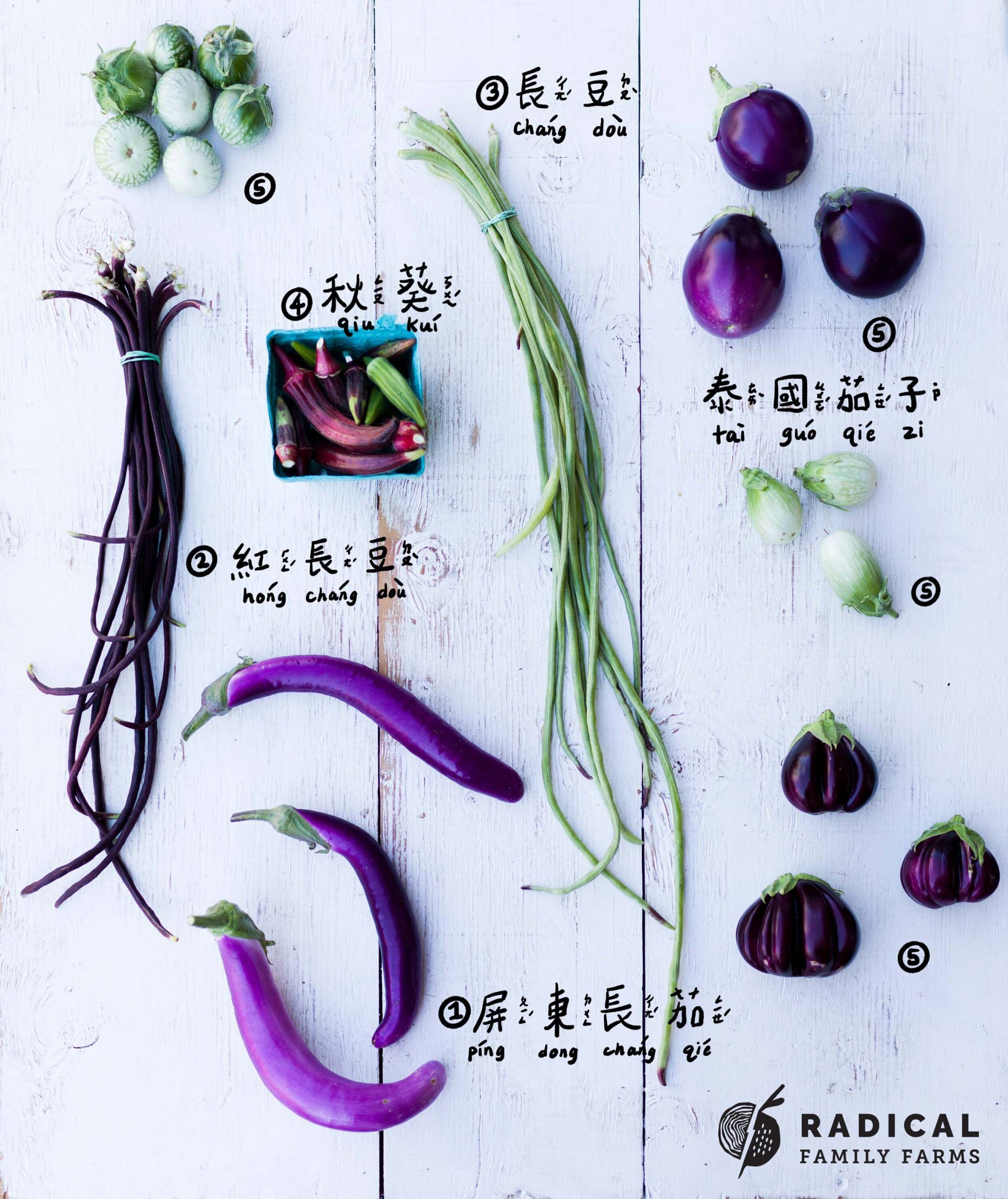 The vegetables from a CSA produce box, including long beans, okra and several varieties of eggplant, arranged artfully on a white wooden board.