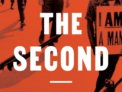 'The Second: Race and Guns in a Fatally Unequal America,' by Carol Anderson.