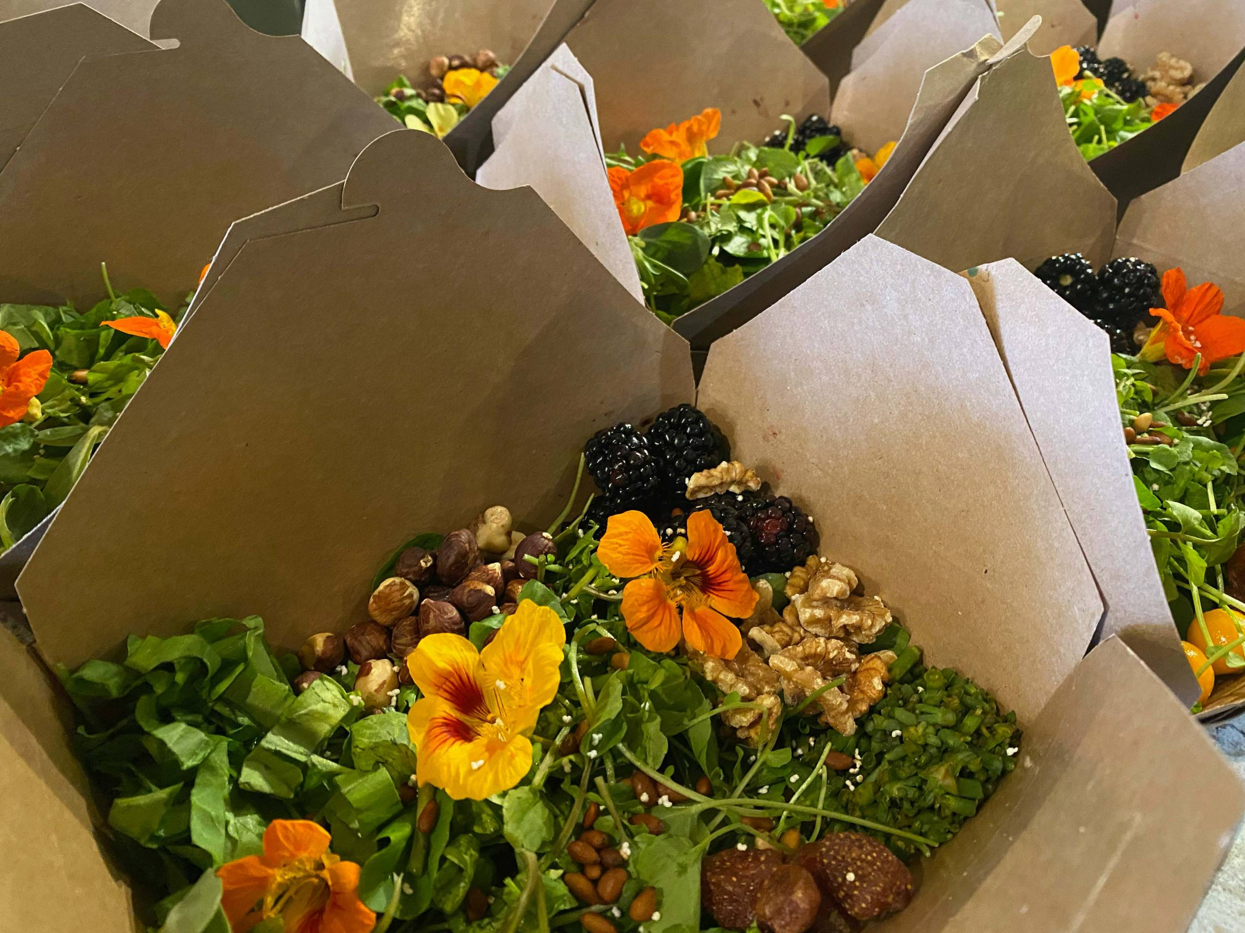 An Ohlone salad in a cardboard takeout box, with bright orange edible flowers and locally gathered greens and nuts.