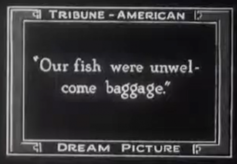 """""""Our fish were unwelcome baggage."""" One of the bizarre captions from the 1925 silent short film, based on the dream of an 'Oakland Tribune' reader."""