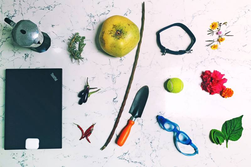 Items, left to right: Coffee pot, rosemary and thyme, laptop with Airpods, eggplants, chili peppers, pomelo, drumstick, trowel, dog collar, tennis ball, swim goggles, wildflowers, ajwain leaves and spinach.