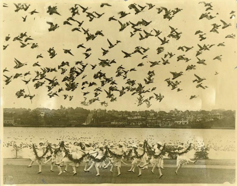 Girls dance, while ducks fly overhead at Lake Merritt's Annual Duck Festival, New Year's Day 1923.