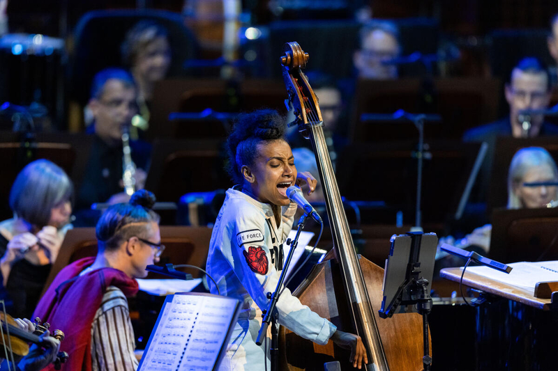 A jazz bassist sings, accompanied by an orchestra.