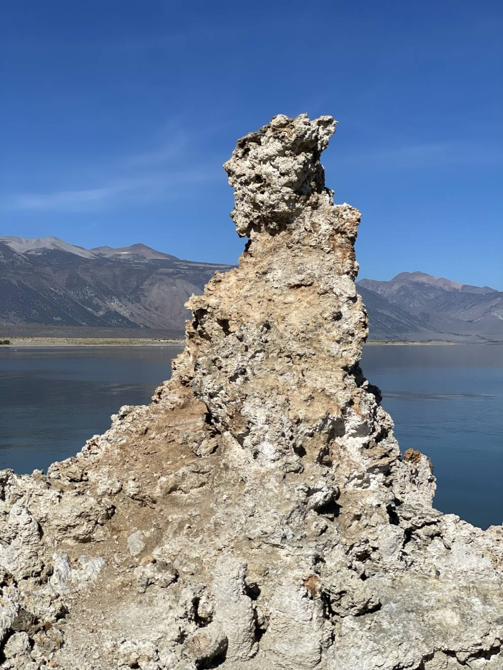 A piece of tufa that looks like the side profile of a warrior.