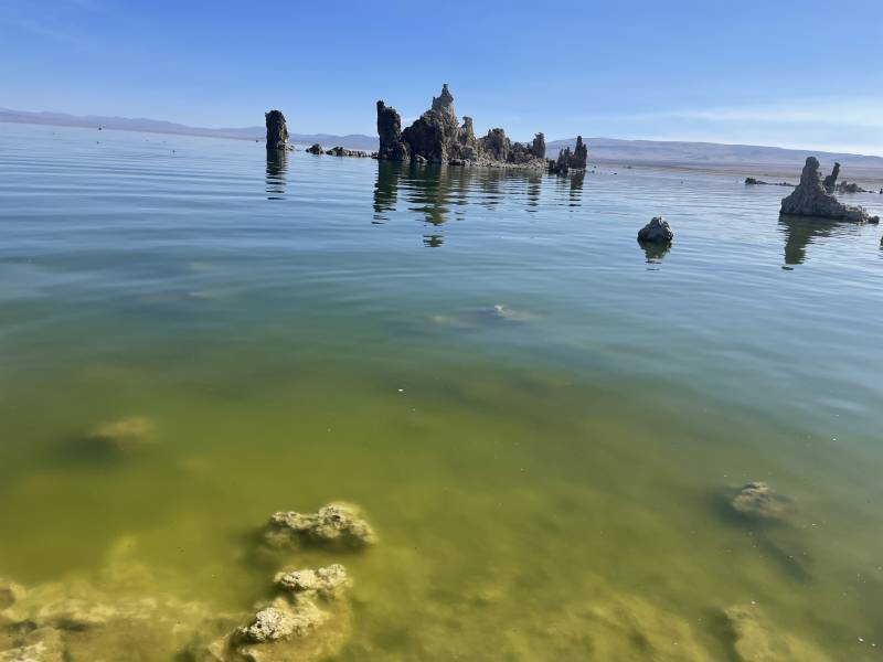 The salt water and fresh water of Mono Lake create a blueish green tint.