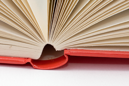 How Social Networks Might Change the Way We Read Books