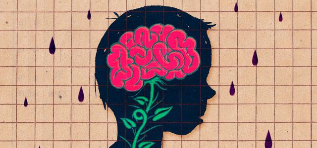 brain300