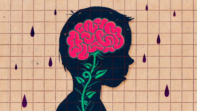 For Teenage Brains, the Importance of Continuing to Learn Deeply