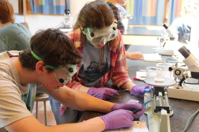 Students participate in chemistry lab at Open Connections. (Courtesy Peter Bergson)