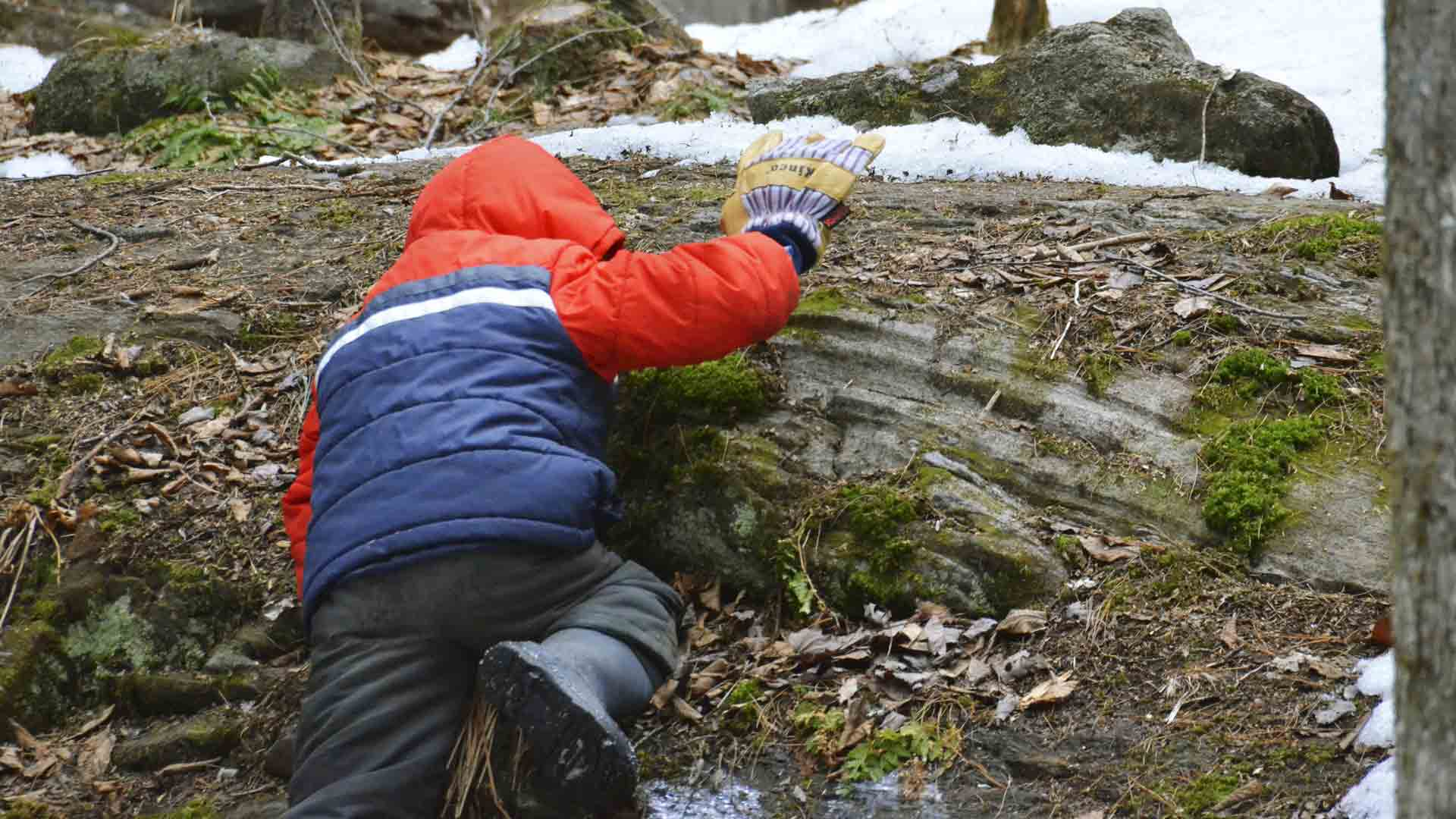 "A boy climbs to his ""sit spot."" Every Forest Monday begins with kindergartners spending 10 minutes sitting quietly alone in designated spots in the woods."
