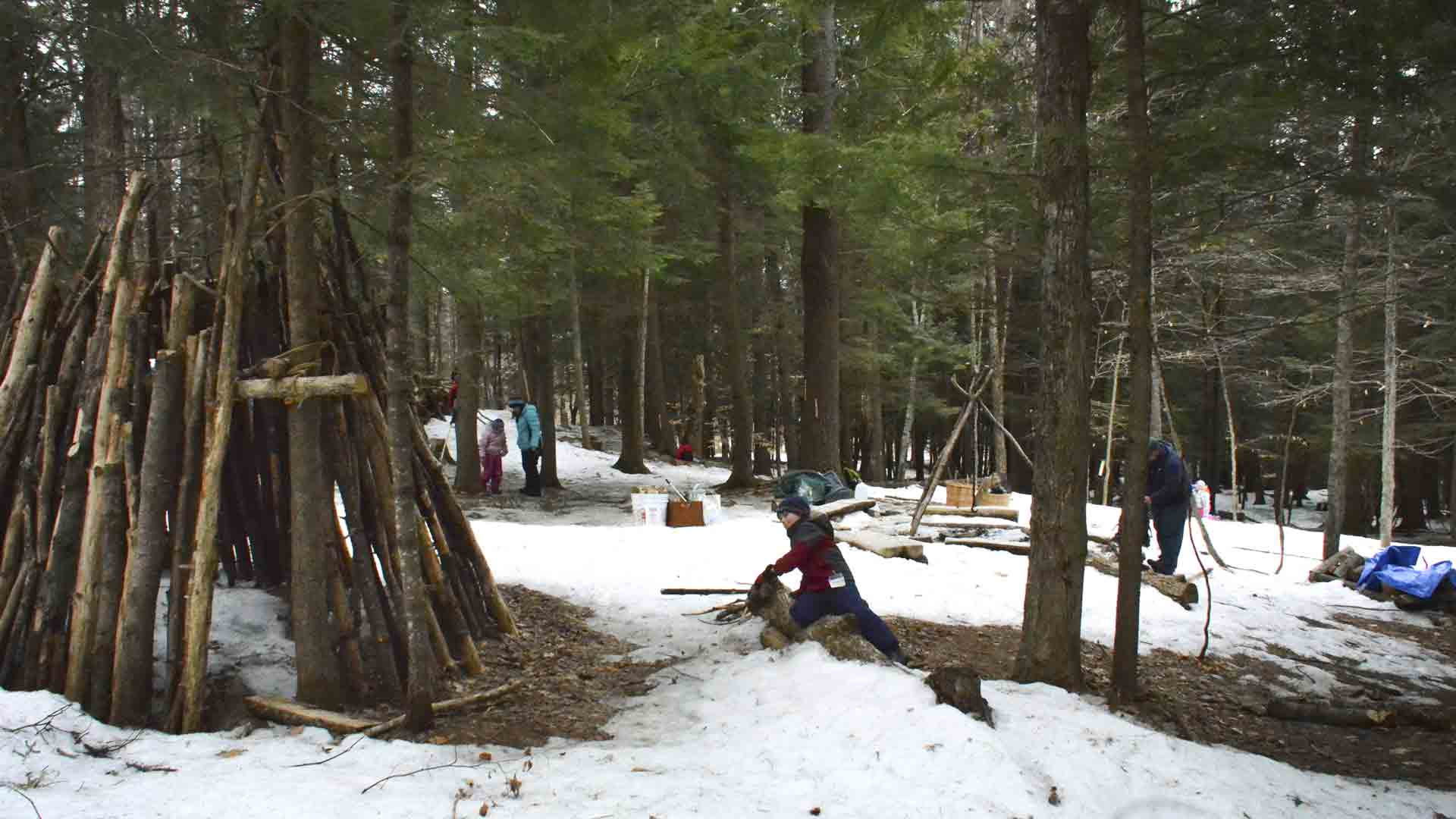 Students and teachers at the Forest Monday home site they've built in the woods next to their school in Quechee, Vermont.