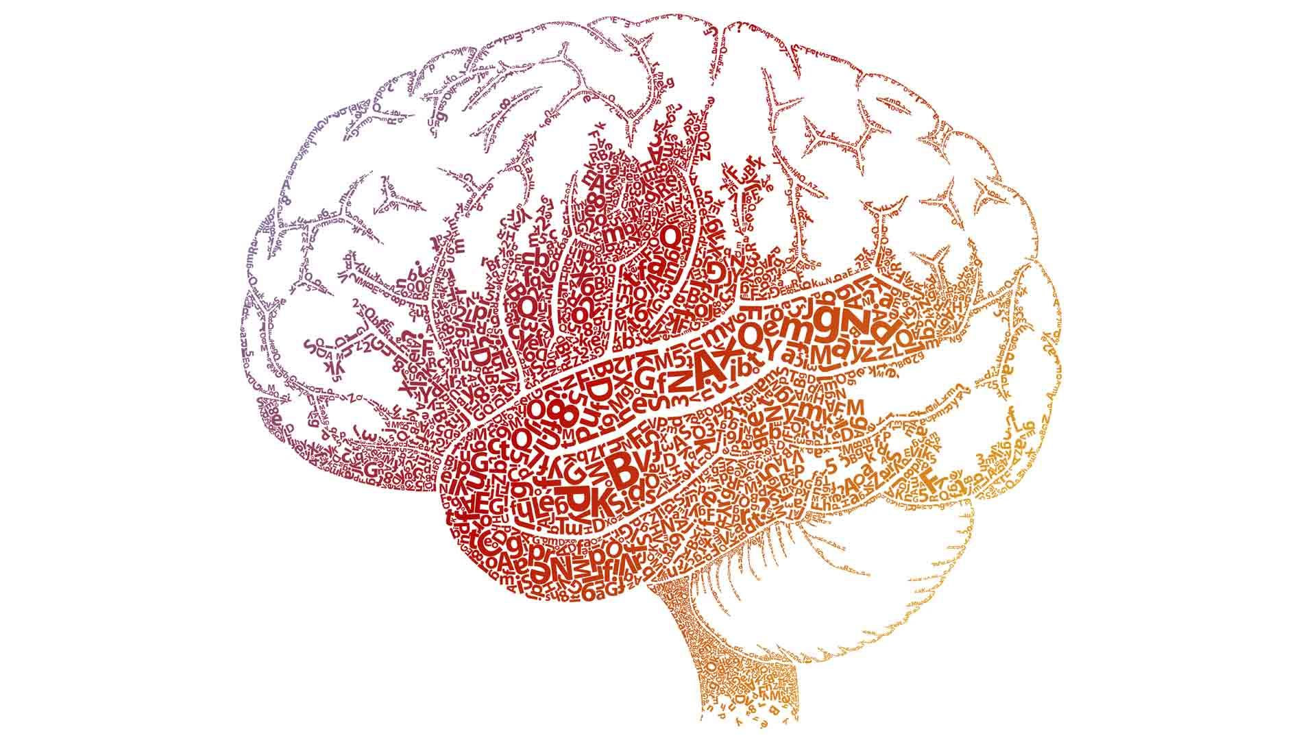 Understanding Dyslexia and the Reading Brain in Kids | MindShift ...