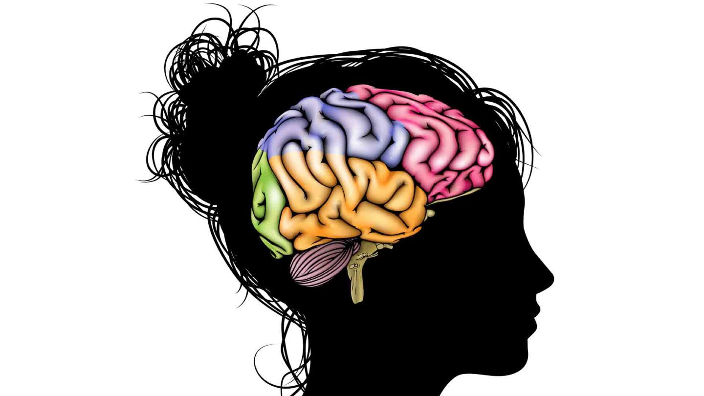 Harnessing the Incredible Learning Potential of the Adolescent Brain ...