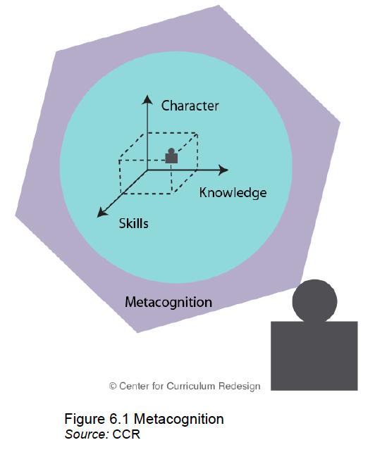 CCR Metacognition