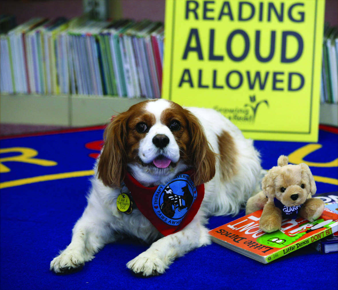 Image result for kid reading to dog