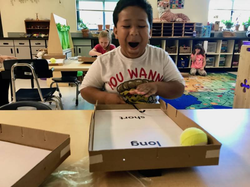 Will New Standards Improve Elementary Science Education?