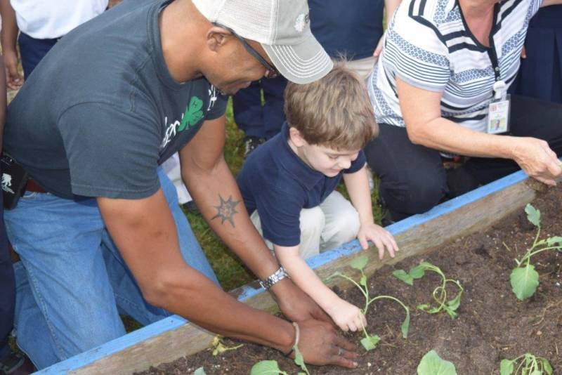 How to Make the Benefits of a School Garden Meaningful in a Child's Life
