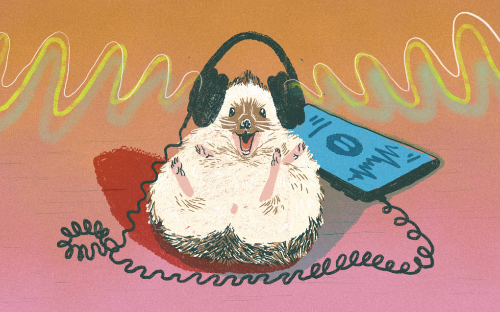 8 Student-Made Podcasts That Made Us Smile | KQED