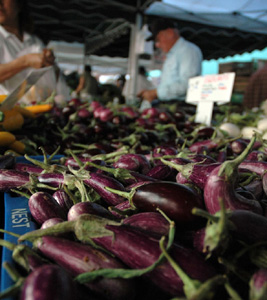 eggplants at farmers market
