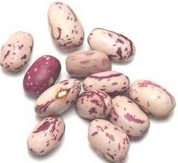 cranberrybeans
