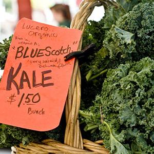 lucero organic kale