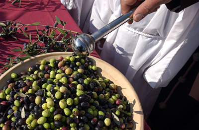 olive blessing