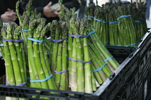asparagus-ferry-building-farmers-market