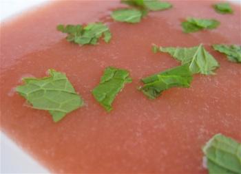 rhubarb-soup