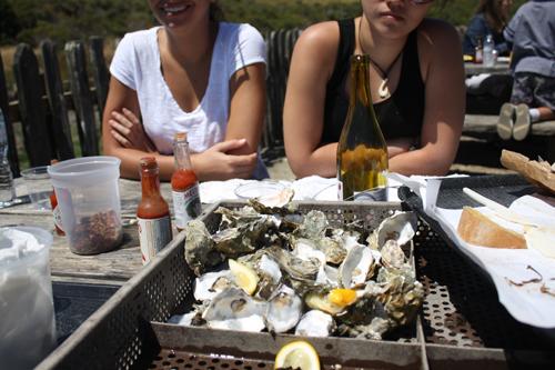 Hog Island Oyster feast