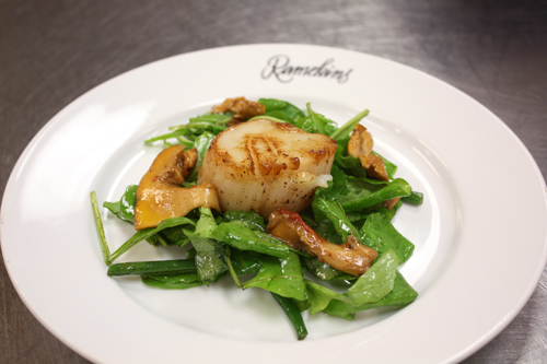 Warm Scallop and Mushroom Salad