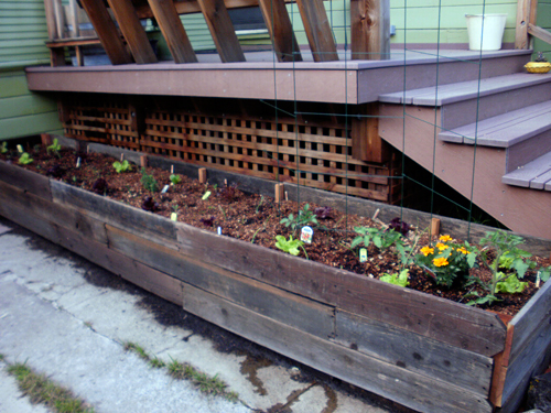 Planters shaped to flank the decks. Photo by Sally Carter.