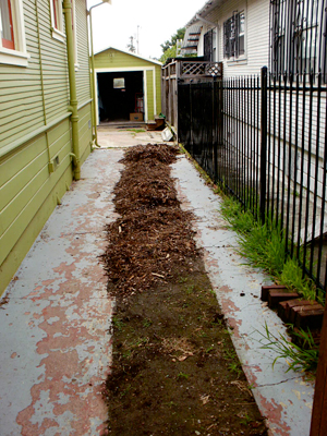 Side before Planting Justice renovation. Photo by Sally Carter.