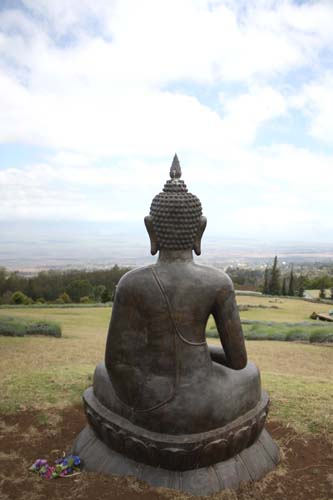 View from Buddha