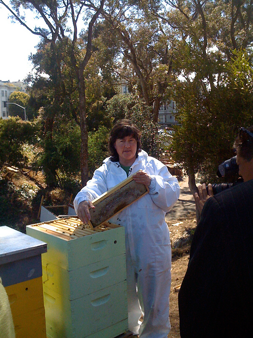 Karen Peteros Explains Bee Crime at Farm. Photo by Booka Alon