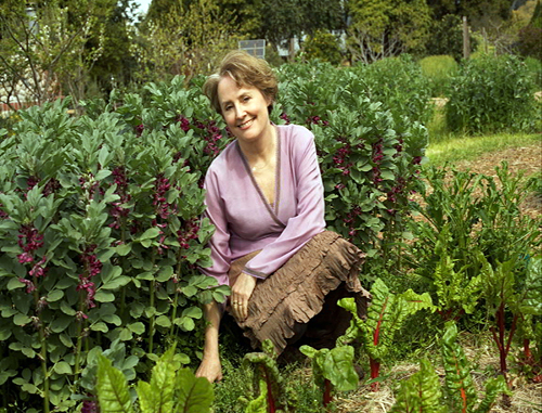 alice waters in the green kitchen scouting waters bay area eats bay area bites 9011