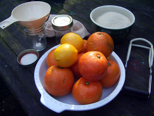 Seville oranges, sugar, and equipment