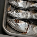 KQED's Forum: How Sustainable is Your Fish?