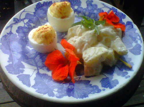 Deviled eggs and potato salad