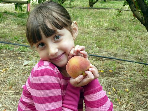 Millie with a Peach
