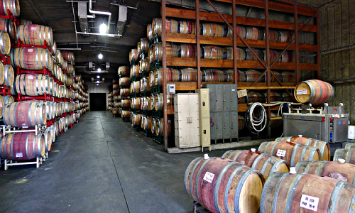 Crushpad barrel room
