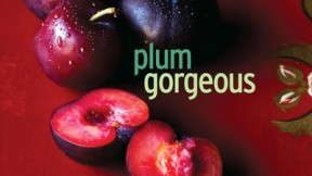 Book Review: Plum Gorgeous, by Romney Steele