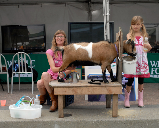 Goat-Milking Demo. Photo: Wendy Goodfriend