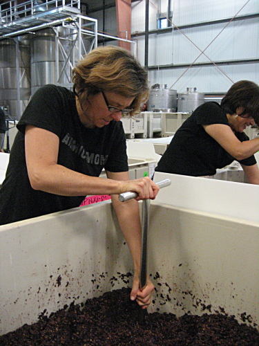 Andrea punching down fermenting grapes