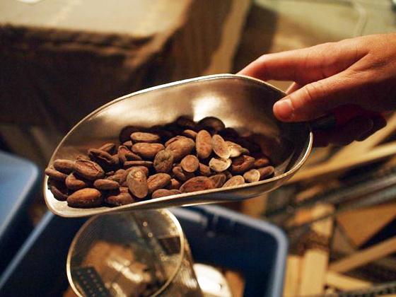 beans - Dandelion chocolate