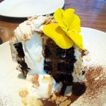 Honolulu Hangover, chocolate layer cake with toasted coconut and marshmallow meringue