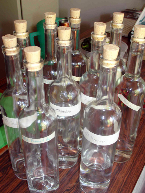 Mezcal bottles. Photo: Susan Coss