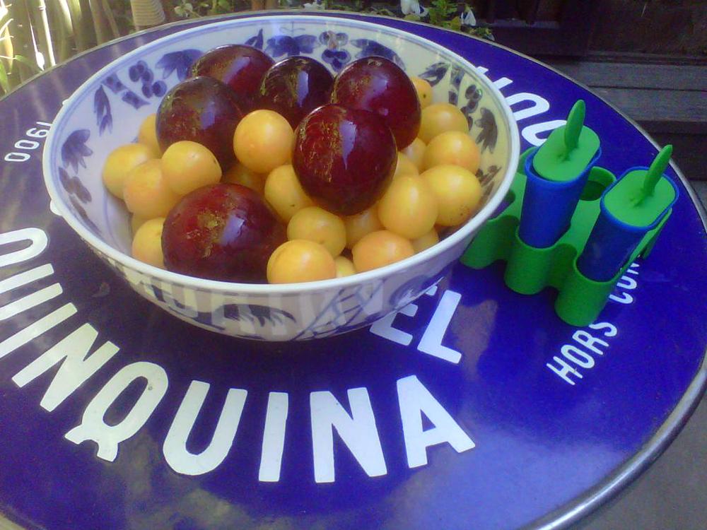 plum pops